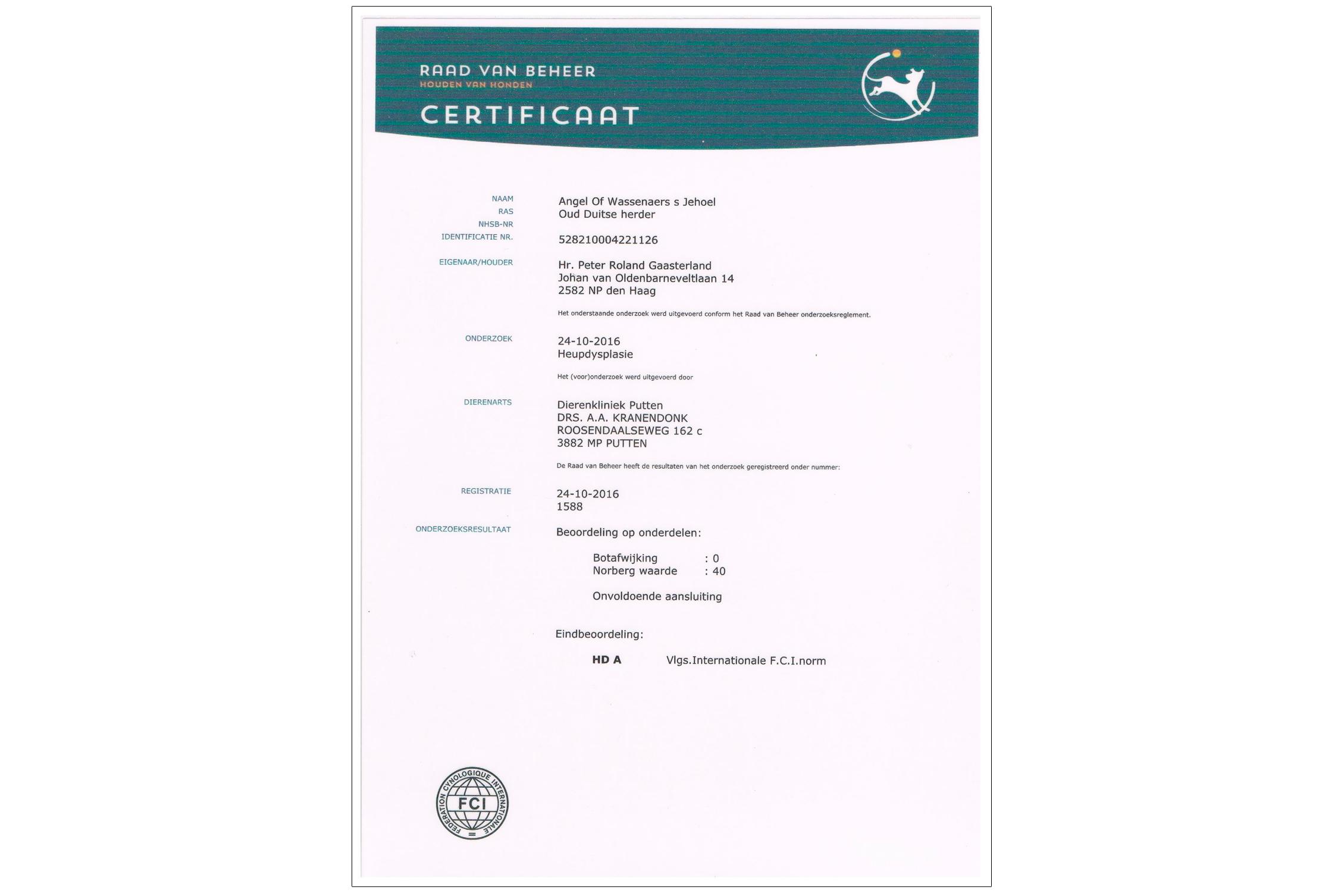 Uitslag onderzoek heupdysplasie